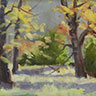 painting entitled Sweetgum Trees in Autumn